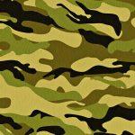 Военный перевод и его особенности. Военный переводчик — профессия