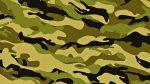 Военный перевод и его особенности. Военный переводчик - профессия
