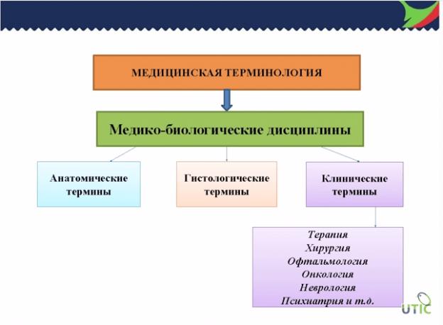 Перевод медицинских и фармацевтических текстов самостоятельно