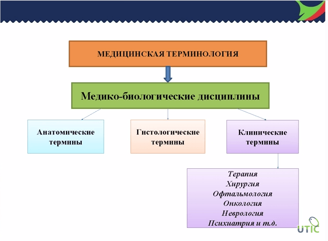 Перевод медицинских и фармацевтических текстов